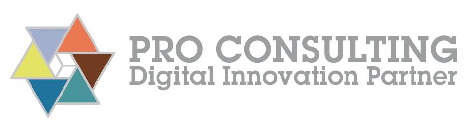 Logo di PRO CONSULTING SRL
